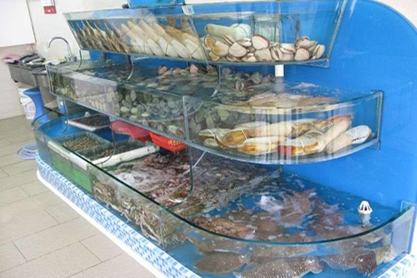 Chú ý thay nước mỗi ngày để hải sản luôn tươi sống