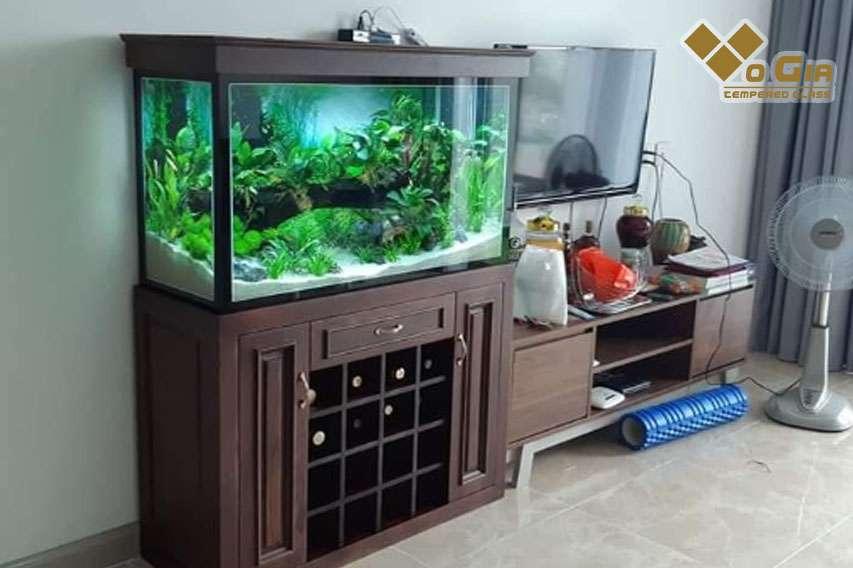 Giá hồ cá cảnh tại Võ Gia Group luôn cạnh tranh và phù hợp nhất