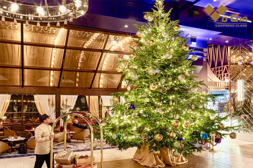 Cây thông noel là điều không thể thiếu trong Giáng sinh